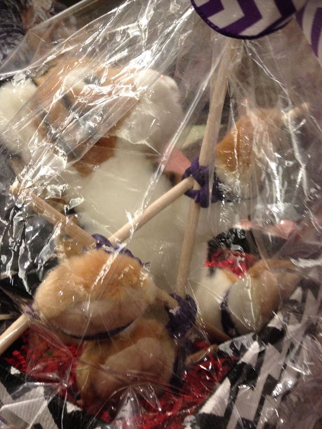 Kallypso Masters gave away a basket at the BDSM Writers & Readers Meetup that included a stuffed tiger in shibari style rope bondage! So cute!
