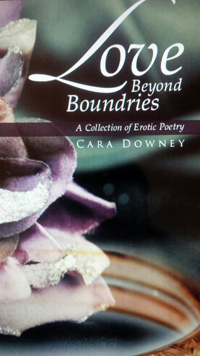 cara_downey_book_cover_200px
